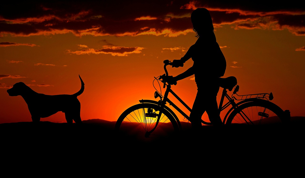 bike riding with dog